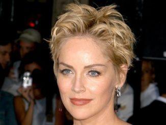 Sharon Stone Plastic Surgery